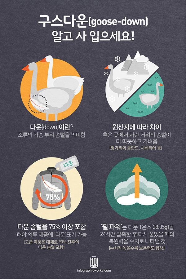 13.11.19_다운_김영연